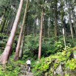 木のむらキャンプ場(埼玉県ときがわ町)に行ってきました③